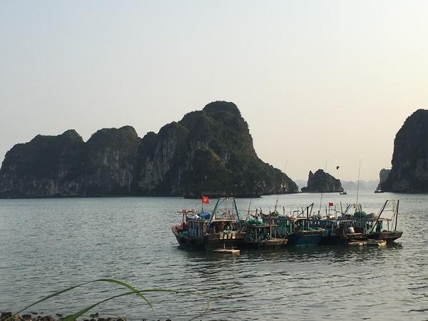 Ha Long Bay, Viet Nam. Source: Tran Thu Cuc